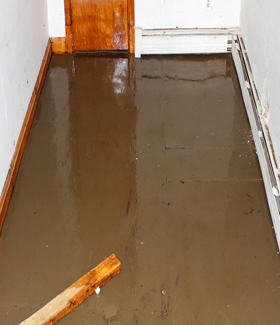 basement-that-has-been-flooded